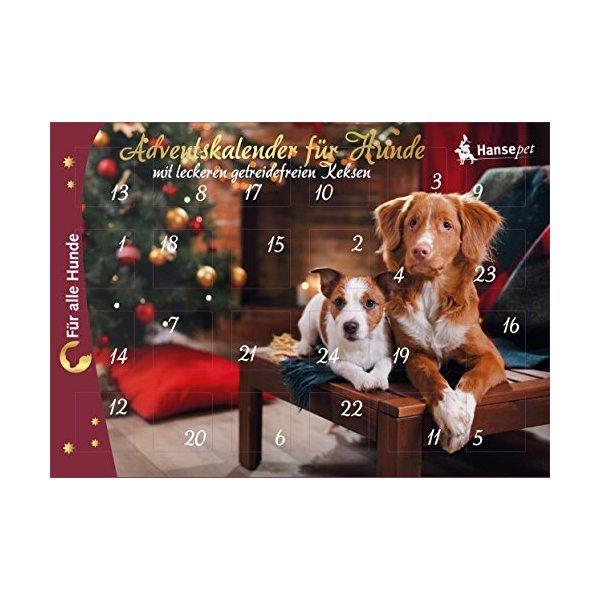 Weihnachtskalender Für Hunde.Adventskalender Für Hunde Hunde Snacks 1 Stück