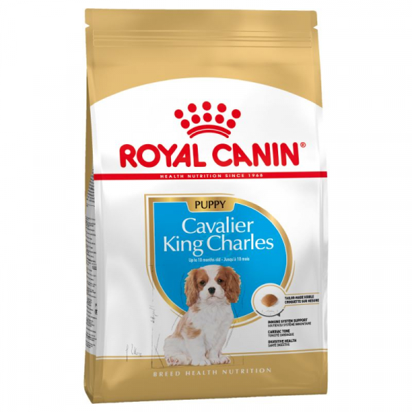 royal canin cavalier king charles puppy brocken. Black Bedroom Furniture Sets. Home Design Ideas