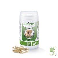 AniForte Zeckenschild natürlicher Zeckenschutz - Naturprodukt für große Hunde 35-50kg