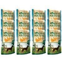 Dehner Best Nature Hundefutter Adult Geflügel und Ananas mit Reis