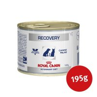 Royal Canin Veterinary Recovery
