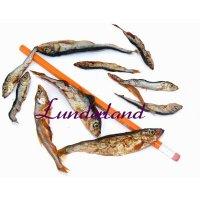 Lunderland Lodde (Fisch)