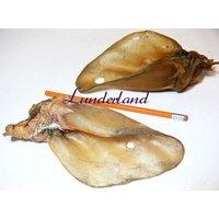 Lunderland Rinderohr ohne Muschel