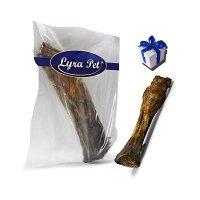 Lyra Pet Pferdeknochen mit Sehne 30 - 40 cm