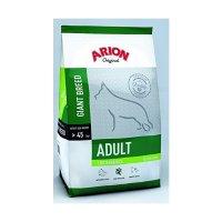 Arion Original Adult Giant