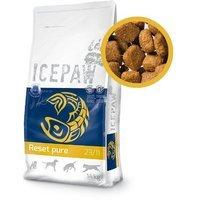 ICEPAW Reset pure 23/11