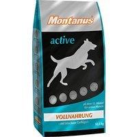 Montanus active
