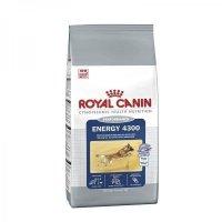 Royal Canin Energy 4300