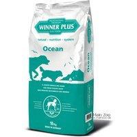 Winner Plus Professional Premium Ocean