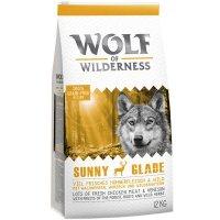 Wolf of Wilderness Sunny Glade - Wild