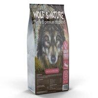 Wolfs Nature Wildes Kaninchen